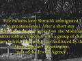 Shmulik Shilo10